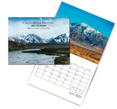 2021-Calendar-Mockup