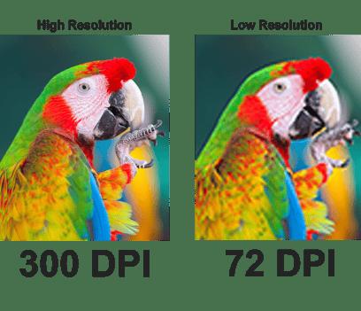 8_resolution_1461x1040