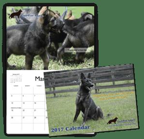 Example Non-Profit Calendar