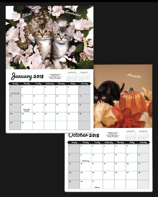 Kitten-themed 2018 custom calendar