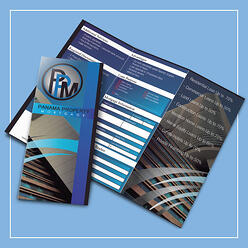 Business brochure with info filler!
