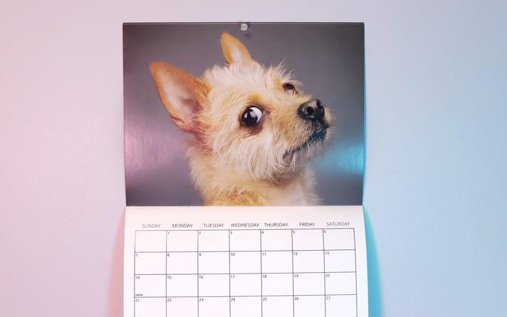 Calendar_SideEye_02