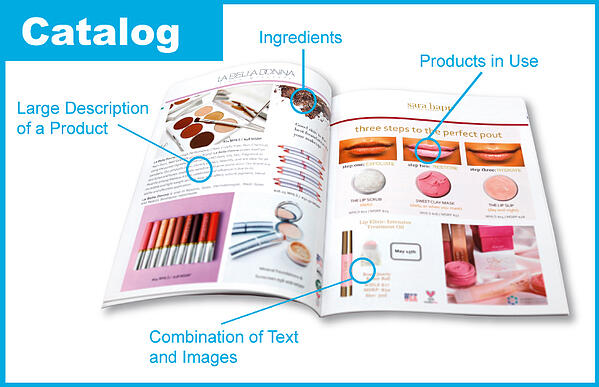 Qualities of a Catalog with Relevant Sections Highlighted