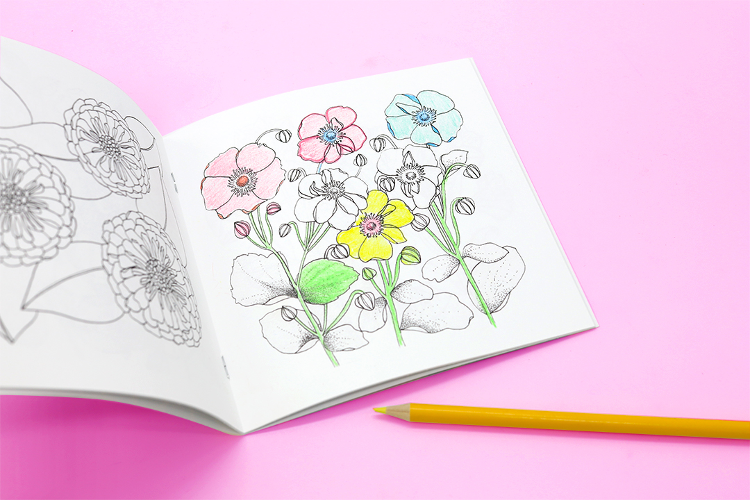 ColoringBook_07_resize