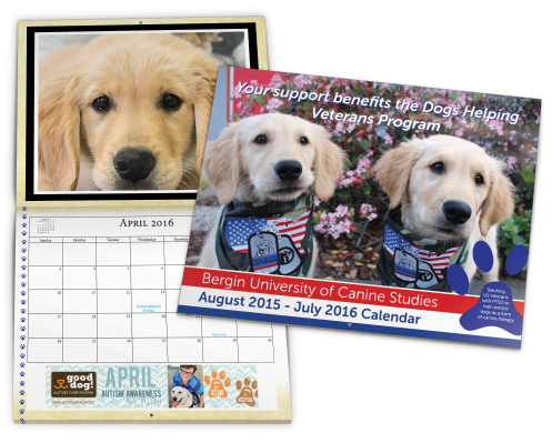 Non Profit Calendar Printing is Easy with us!