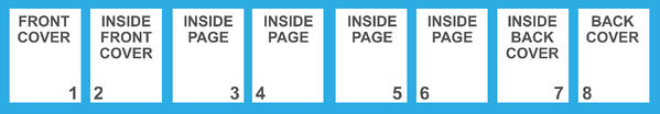 Numbering Inside Pages