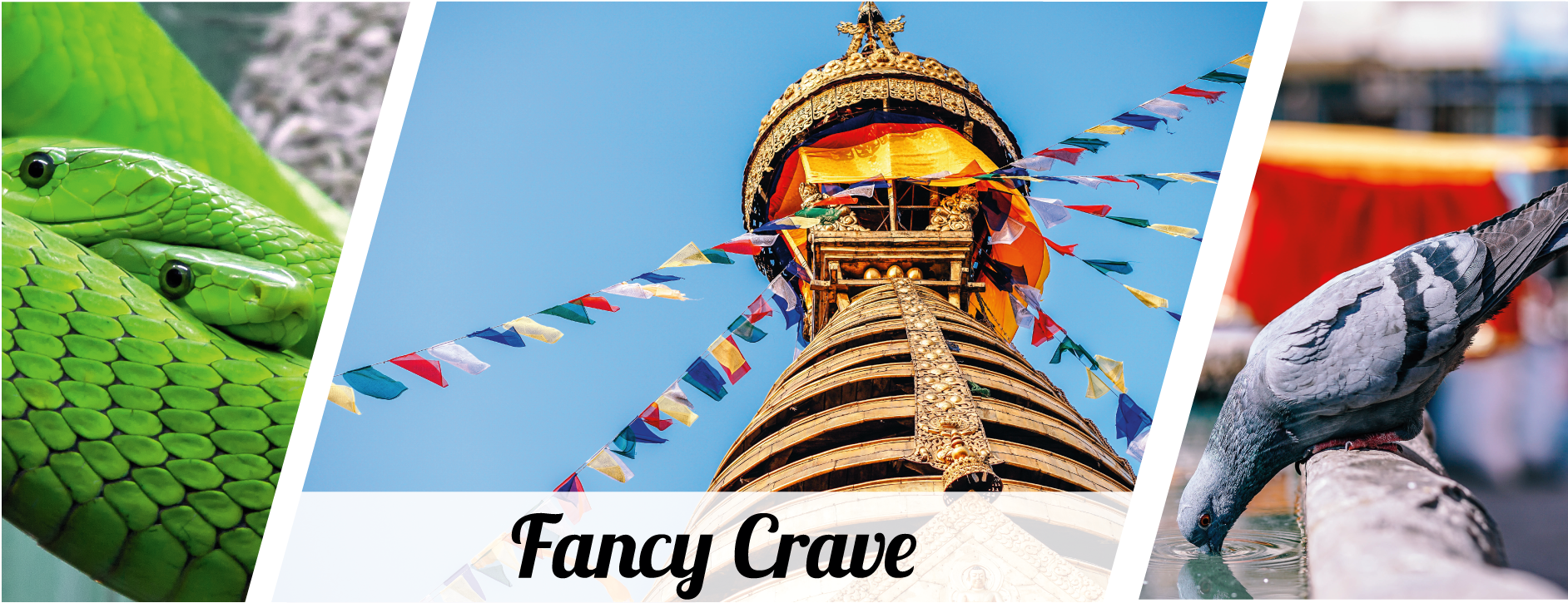 Fancy Crave image gallery