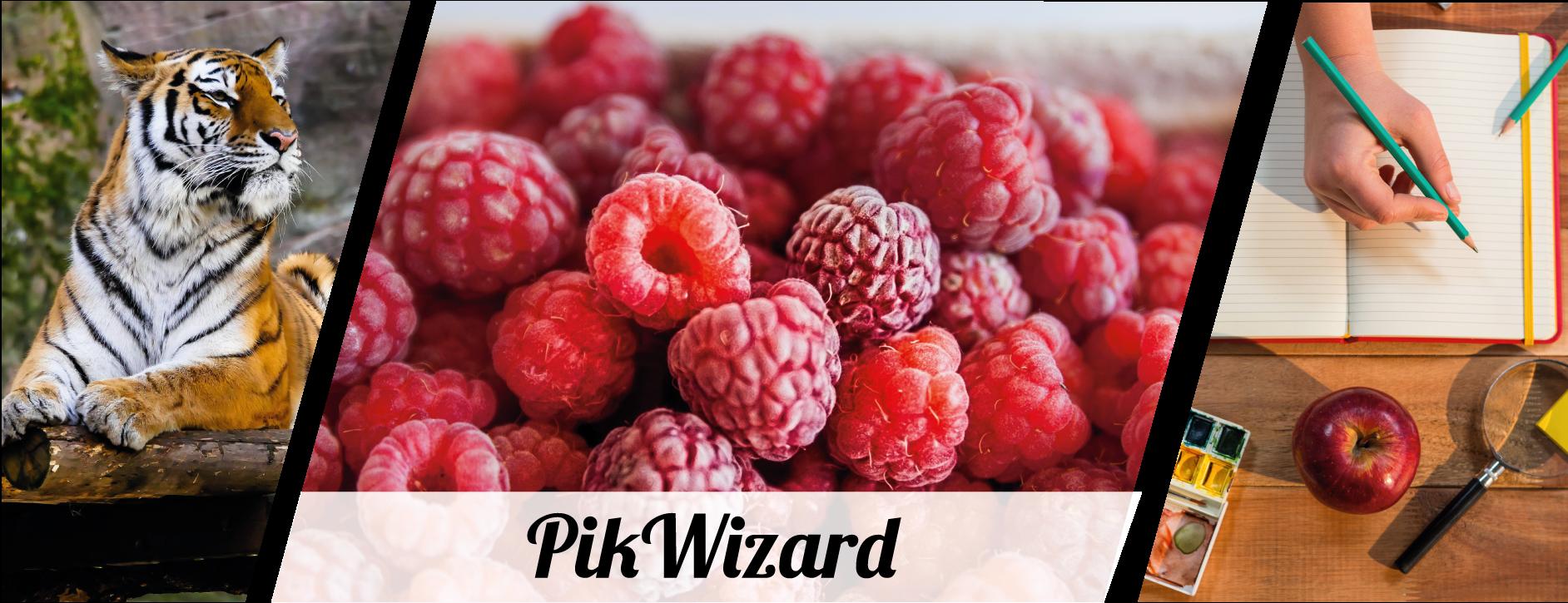 PikWizard image gallery