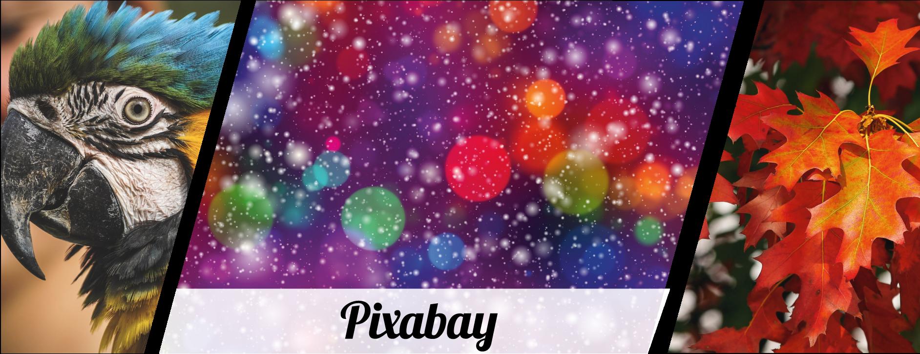 pixabay image collage