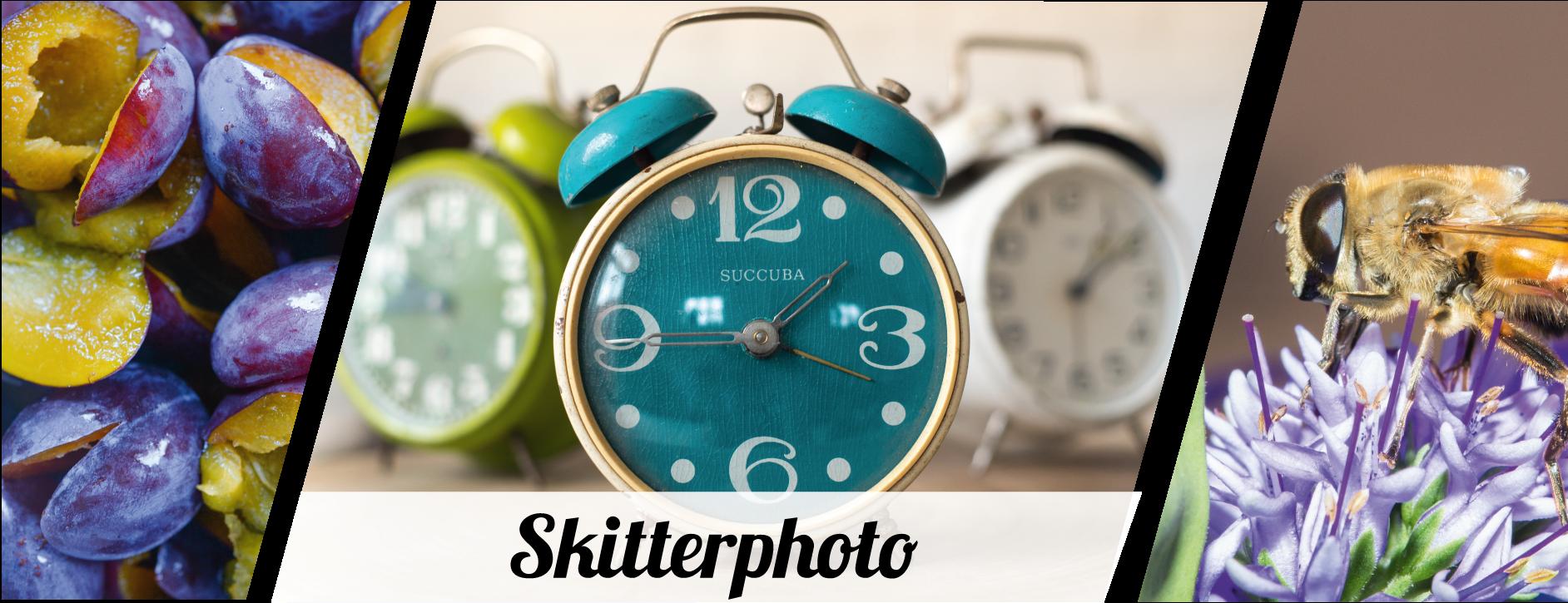 Skitterphoto image gallery