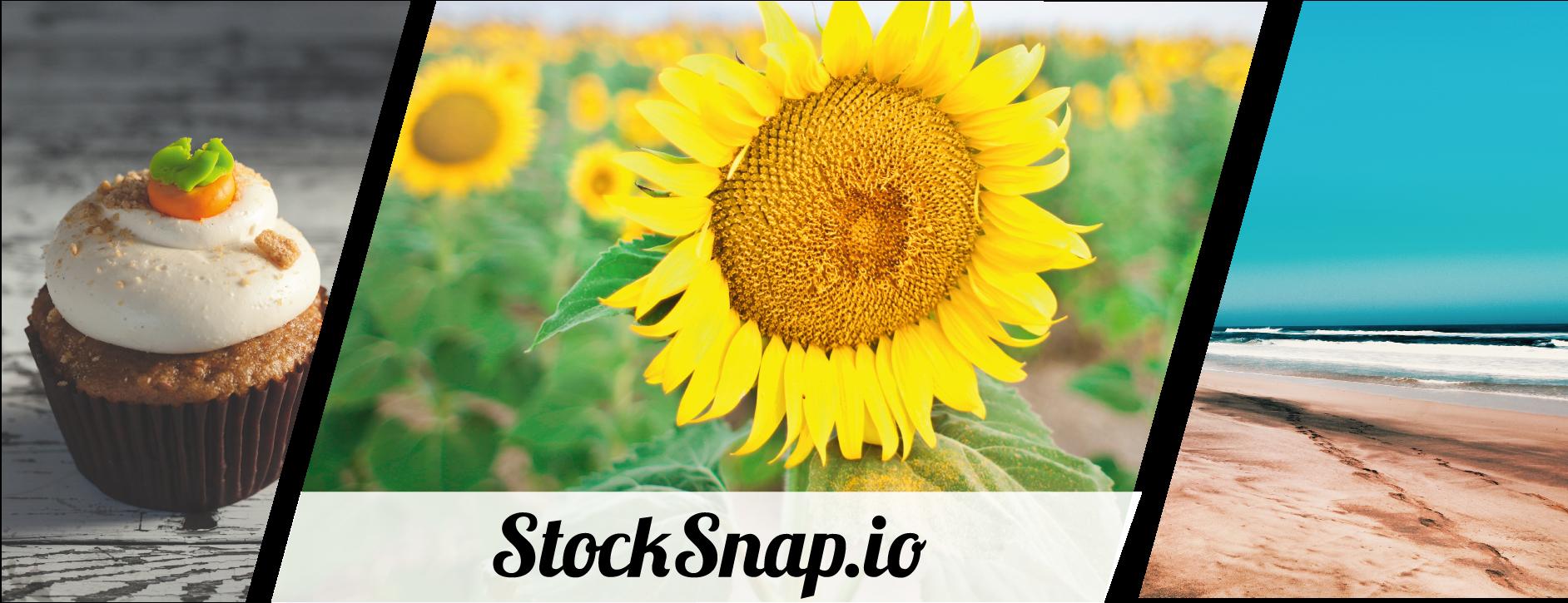 stocksnap image collage