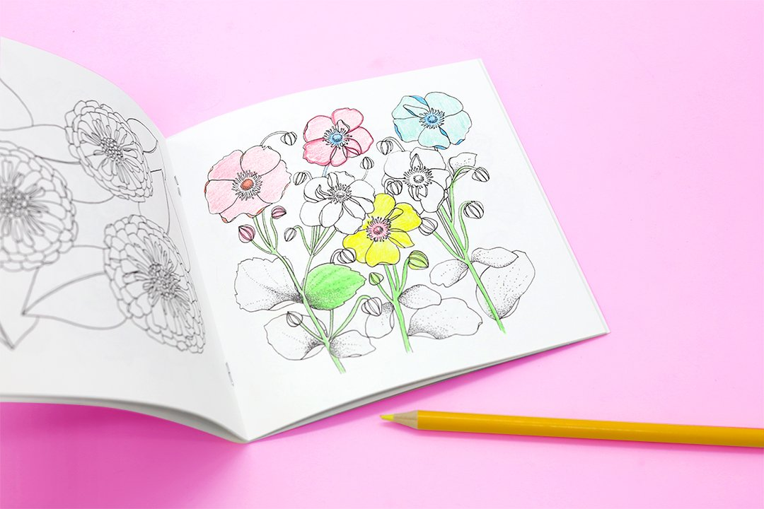 DIY Photo Coloring Book Tutorial - Photoshop CS5 - YouTube | 720x1080